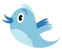 tweet brd 1.7 inch